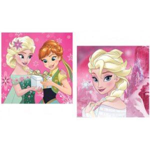 Disney Jégvarázs párnahuzat 40*40 cm